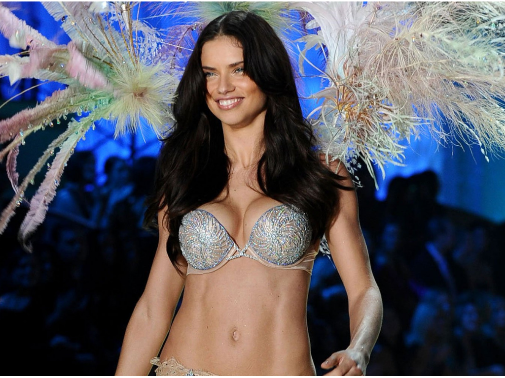 Victorias_Secret_Fashion_Show_2008_Fantasy_Bra